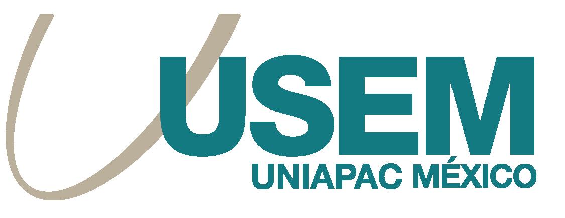 USEM Logo
